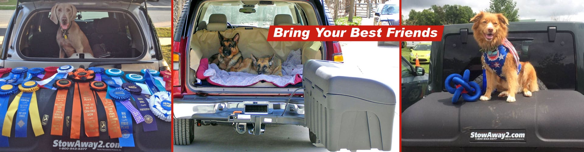StowAway traveling with dogs banner