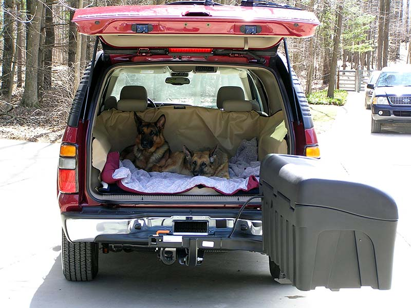 Two dogs laying in the back of SUV with StowAway Standard Carrier