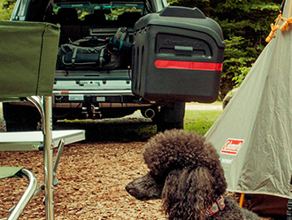 Dog laying on the ground at campsite in front of StowAway MAX Cargo Carrier swung out