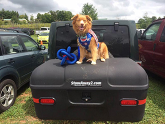 Dog in costume sitting on StowAway MAX Cargo Carrier