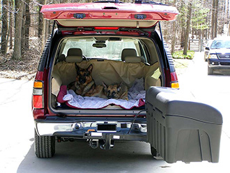 Two dogs laying in back of SUV with StowAway Standard Cargo Carrier swung out