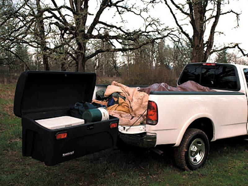 Ford F-150 with StowAway Standard Cargo Carrier